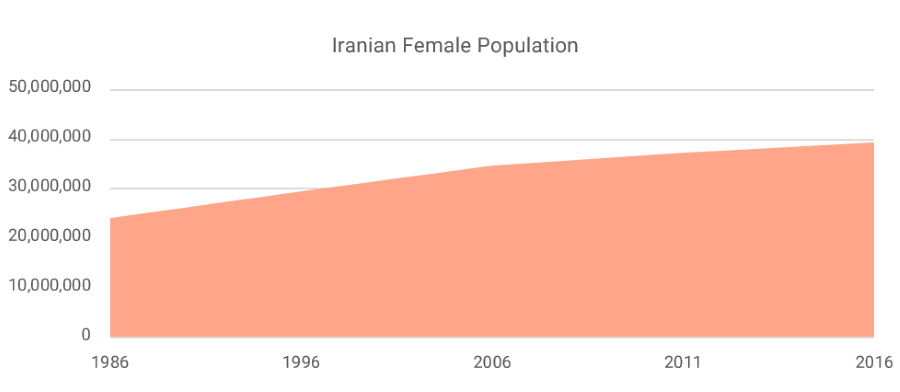 bags-shoes-iranian-female-population