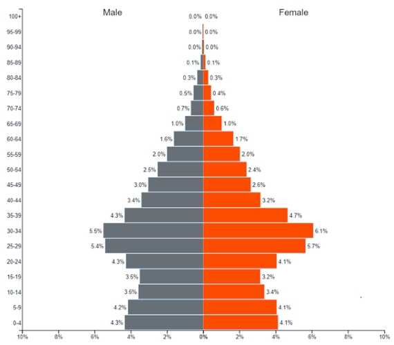 iran population pyramid - Demographics